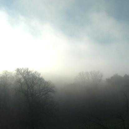 wilder Nebel quadrat